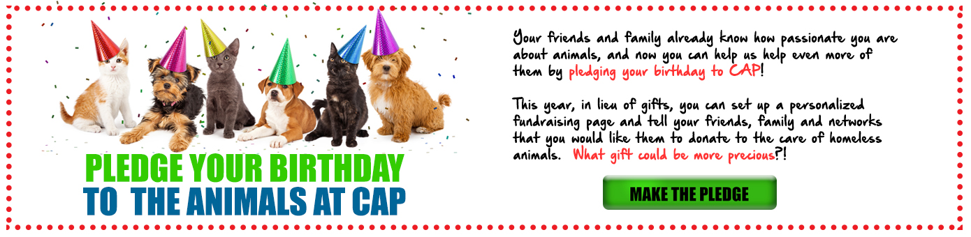 Pledge your birthday to CAP!